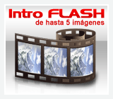 intro flash